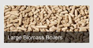 Large Biomass Boilers